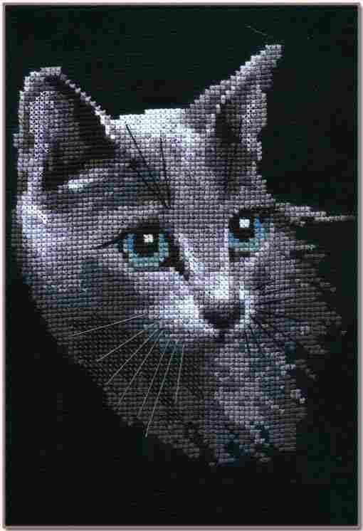 Серый котенок (Риолис)